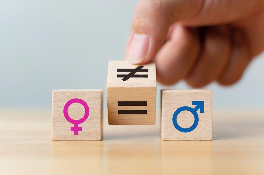Türk Anayasalarına Cinsiyet Temelli Ayrımcılık Yasağı Işığında Kısa Bir Bakış
